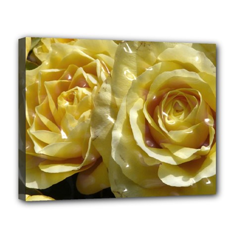 Yellow Roses Canvas 14  X 11