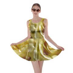 Yellow Roses Skater Dresses