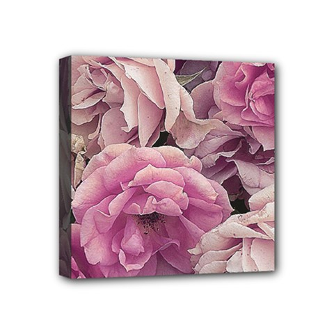 Great Garden Roses Pink Mini Canvas 4  X 4