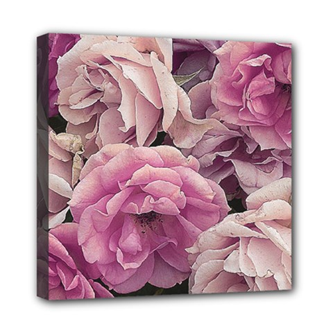 Great Garden Roses Pink Mini Canvas 8  X 8