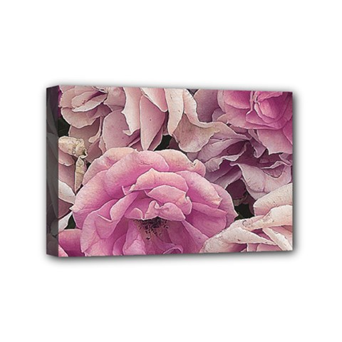 Great Garden Roses Pink Mini Canvas 6  X 4