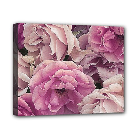 Great Garden Roses Pink Canvas 10  X 8