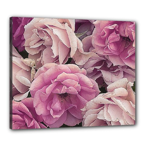 Great Garden Roses Pink Canvas 24  X 20