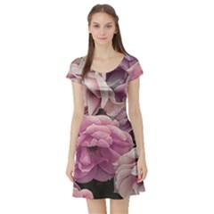 Great Garden Roses Pink Short Sleeve Skater Dresses