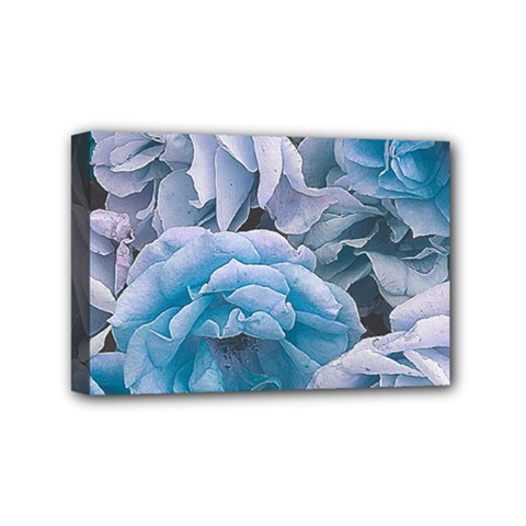 Great Garden Roses Blue Mini Canvas 6  X 4