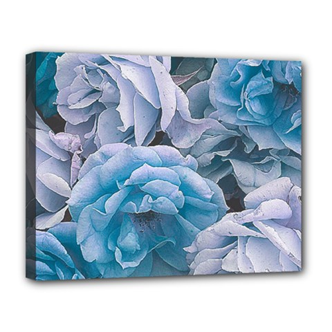 Great Garden Roses Blue Canvas 14  X 11