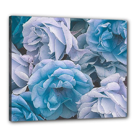 Great Garden Roses Blue Canvas 24  X 20