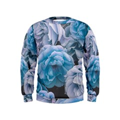 Great Garden Roses Blue Boys  Sweatshirts