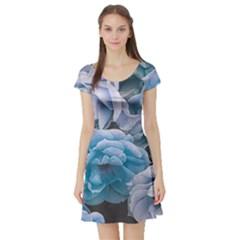 Great Garden Roses Blue Short Sleeve Skater Dresses