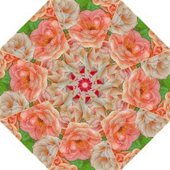 Great Garden Roses, Orange Folding Umbrellas