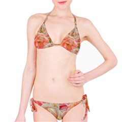Great Garden Roses, Orange Bikini Set