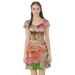 Great Garden Roses, Orange Short Sleeve Skater Dresses