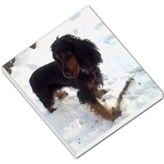Black Tri English Cocker Spaniel In Snow Small Memo Pads