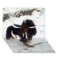 Black Tri English Cocker Spaniel In Snow Clover 3D Greeting Card (7x5)