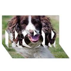 Ess Walking MOM 3D Greeting Card (8x4)