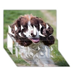 Ess Walking You Rock 3D Greeting Card (7x5)