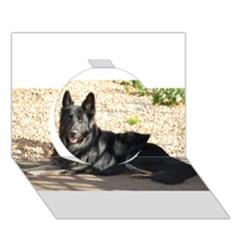Black German Shepherd Laying Circle 3D Greeting Card (7x5)