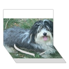 Havanese Full Heart Bottom 3D Greeting Card (7x5)