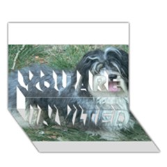 Havanese Full YOU ARE INVITED 3D Greeting Card (7x5)