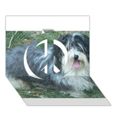Havanese Full Peace Sign 3D Greeting Card (7x5)