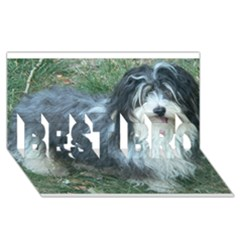 Havanese Full BEST BRO 3D Greeting Card (8x4)