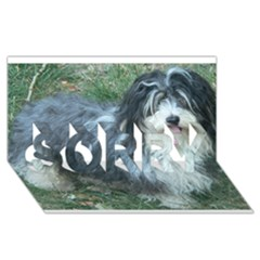 Havanese Full SORRY 3D Greeting Card (8x4)