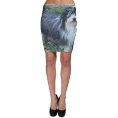 Havanese Full Bodycon Skirts