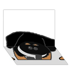 Peeping Rottweiler Circle Bottom 3D Greeting Card (7x5)