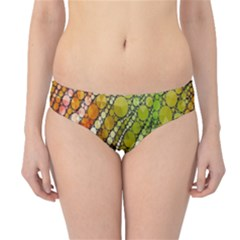 Orange Green Zebra Bling Pattern  Hipster Bikini Bottoms