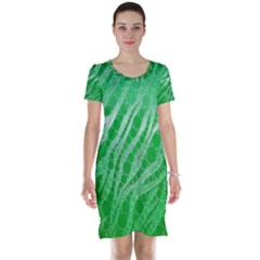 Florescent Green Zebra Abstract  Short Sleeve Nightdresses