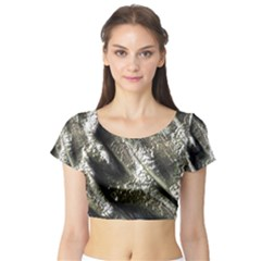 Brilliant Metal 5 Short Sleeve Crop Top