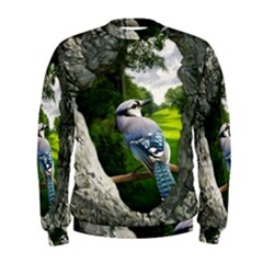 Bird In The Tree Men s Sweatshirts