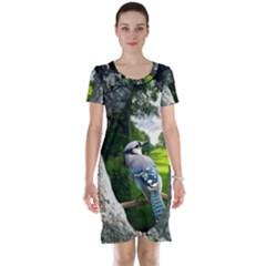 Bird In The Tree Short Sleeve Nightdresses