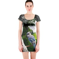 Bird In The Tree Short Sleeve Bodycon Dresses