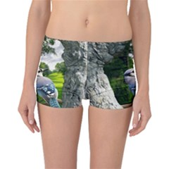 Bird In The Tree Boyleg Bikini Bottoms