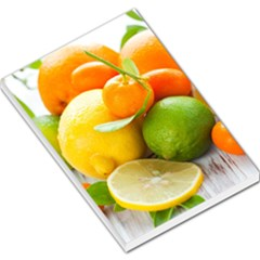 Citrus Fruits Large Memo Pads