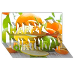 Citrus Fruits Happy Birthday 3D Greeting Card (8x4)