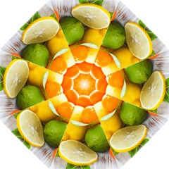 Citrus Fruits Golf Umbrellas