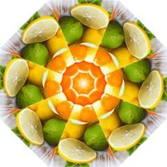 Citrus Fruits Hook Handle Umbrellas (medium)