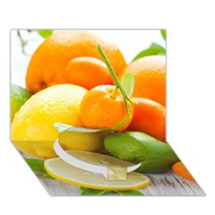 Citrus Fruits Circle Bottom 3D Greeting Card (7x5)