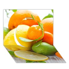 Citrus Fruits Circle 3D Greeting Card (7x5)