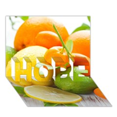 Citrus Fruits Hope 3d Greeting Card (7x5)