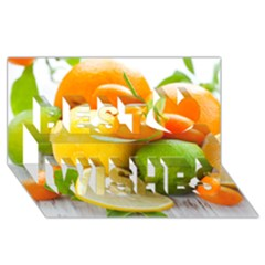 Citrus Fruits Best Wish 3D Greeting Card (8x4)