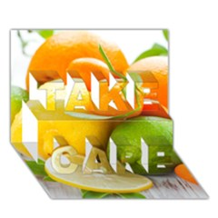Citrus Fruits TAKE CARE 3D Greeting Card (7x5)
