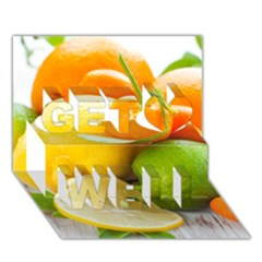 Citrus Fruits Get Well 3D Greeting Card (7x5)