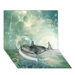 Funny Dswimming Dolphin Circle Bottom 3d Greeting Card (7x5)