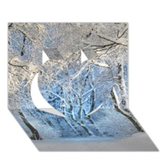Another Winter Wonderland 1 Heart 3d Greeting Card (7x5)