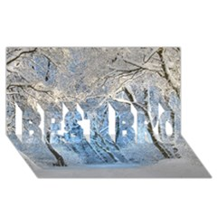 Another Winter Wonderland 1 BEST BRO 3D Greeting Card (8x4)