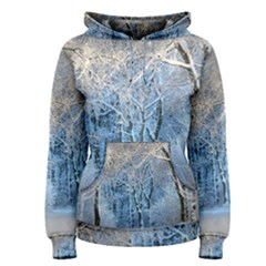 Another Winter Wonderland 1 Women s Pullover Hoodies