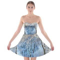 Another Winter Wonderland 1 Strapless Bra Top Dress